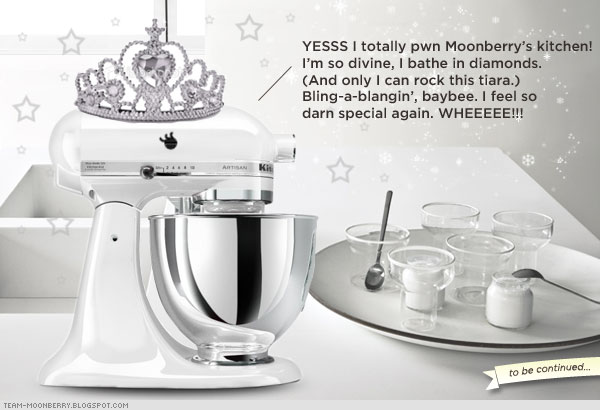 New KitchenAid Mixer