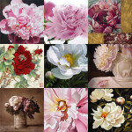 The Meaning Of Peony