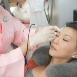 Erabrowlogy Eyebrow Embroidery at Erabelle